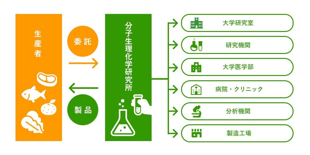 当社研究員と各分野の医師や大学教授、専門家との共同開発の流れを示した図