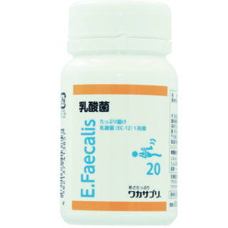 乳酸菌(EC-12)